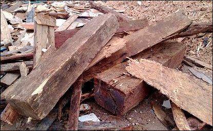 maderas apiladas