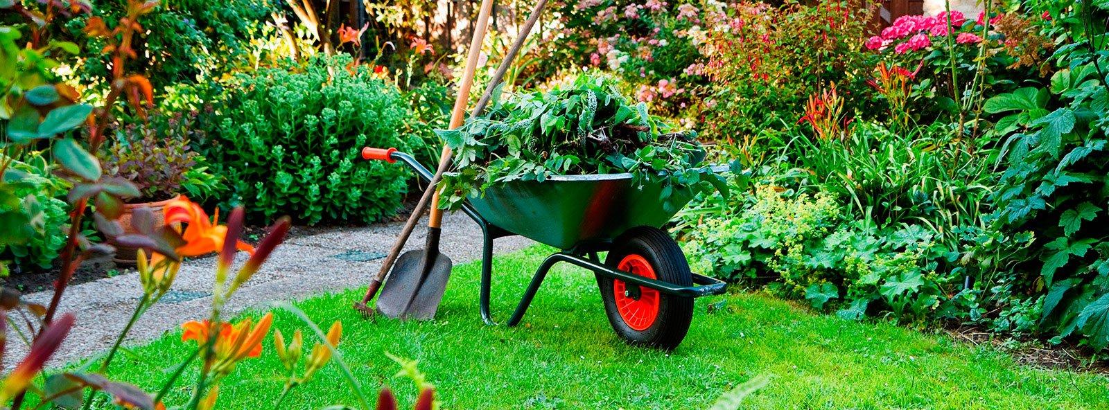 fondo-jardineria